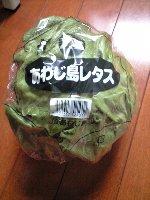 レタス 100円