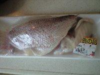 大きな真鯛 1匹 980円