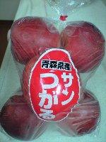 青森県産 サンつがる りんご 6個で198円